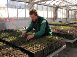 The Yarralumla Seed Bank Is Home To A Living Record Of Every Collected Purchased And D At Nursery Since 1948